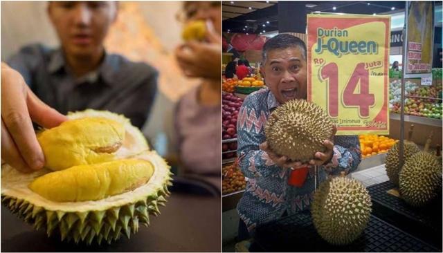 أغلى فاكهة في العالم في اندونيسيا...ألف دولار للثمرة الواحدة