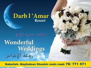 nabatieh.org/news.php?go=fullnews&newsid=3519