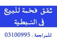 nabatieh.org/news.php?go=fullnews&newsid=6663